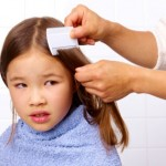 Causes And Prevention Of Head Lice In Children