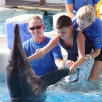 Dolphin Therapy For Autism